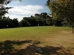 2019グランドゴルフ.jpg